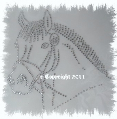 Bügelmotiv Strass hübscher Pferdekopf Reiten Chrystal 120318