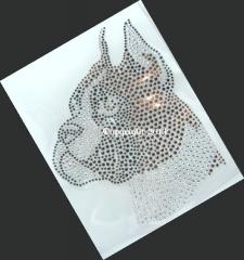 Hotfix Bügelbild Dog Hund Boxer Boxerkopf  130211